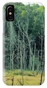 Alabama Autumn Marsh IPhone Case