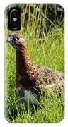 Alaska State Bird Willow Ptarmigan IPhone Case