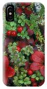 Alaskan Berries 1 IPhone Case