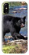 Alaskan Black Bear Hunting In A River IPhone Case