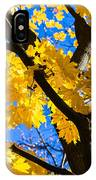 Alchemy Of Nature - Refining The Sungold IPhone Case