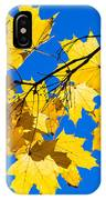 Alchemy Of Nature - Spray IPhone Case