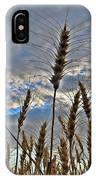 All About Wheat IPhone Case