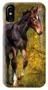 All Legs And Attitude IPhone Case