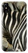 All Stripes Zebra 3 IPhone Case