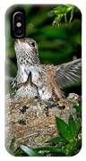Allens Hummingbird Chicks IPhone Case