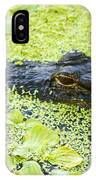 Alligator In Duckweed Looking At Me IPhone Case