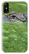 Alligator In Swamp IPhone Case