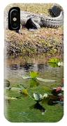 Alligator Sunbathing IPhone Case