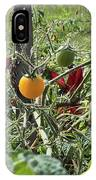 Almost Harvest Time IPhone Case