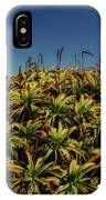 Aloe Is Anyone There IPhone Case