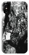 Amazing Oak Tree IPhone Case