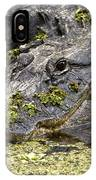 American Alligator Print IPhone Case