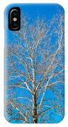 American Beech IPhone Case