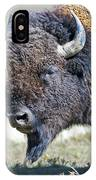 American Bison Closeup IPhone Case