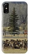American Elk   #4305 IPhone Case