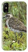 American Golden Plover IPhone Case
