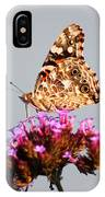 American Painted Lady Butterfly White Square IPhone Case