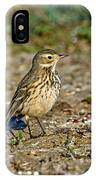 American Pipit IPhone Case