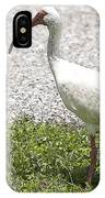 American White Ibis Poster Look IPhone Case
