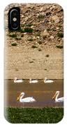 American White Pelicans IPhone Case