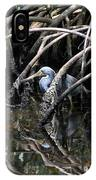 Among The Mangrove Roots IPhone Case