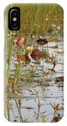 Among The Waterlillies 2 IPhone Case