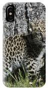 Amur Leopard Cub Antics IPhone Case