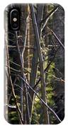 An Afternoon Walk IPhone Case