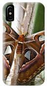 An Atlas Moth  IPhone Case