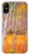 An Autumn Symphony Of Colour IPhone Case