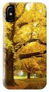An Autumn Walk - 2 IPhone Case