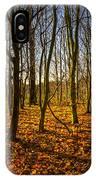 An Autumn Walk IPhone X Case