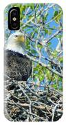 An Eagle In Its Nest  IPhone Case
