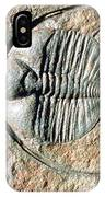 An Internal Fossil Cast Of Trilobite IPhone Case