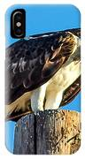An Osprey Calling IPhone Case