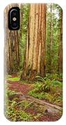 Ancient Forest - The Massive Giant Redwoods Sequoia Sempervirens In Redwood National Park. IPhone Case