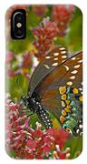 Angel Of The Wildflowers IPhone Case