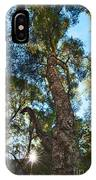 Angeles Sun -beautiful Tree With Sunburst In Angeles National Forest In The San Gabriel Mountails IPhone Case