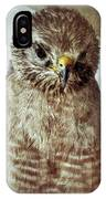 Angry Hawk IPhone Case