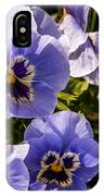 Angry Pansy IPhone Case