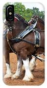 Anheuser Busch Budweiser Clydesdale Horses In Harness Usa Rodeo IPhone Case