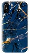 Anhinga Everglades IPhone Case