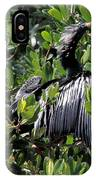Anhinga Male IPhone Case