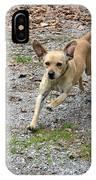 Animals 173 IPhone Case
