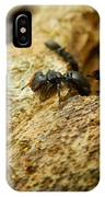 Ants On Wood IPhone Case