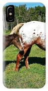 Appaloosa Mamma And Baby IPhone Case