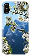 Apple Blossoms Frame The Rockies IPhone Case