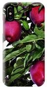 Apple Picking Time IPhone Case
