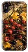 Apples In Fall IPhone Case